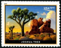 USA (2019) - Set -  /  Joshua Tree - Arbre - Heritage - Árboles