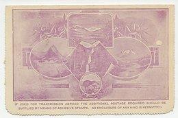 Postal Stationery New Zealand 1898 Bird - Kiwi - Mount Cook - Oiseaux