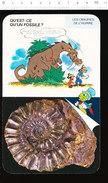 Humour Paléontologie Fossiles Animal Préhistorique Fossile D'ammonite   01D33 - Vieux Papiers