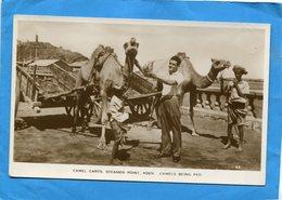 ADEN-Camels Carts Steamer Pointb -difficile Attelage De Chameaux  à Un Charette-plan Animé-- -années 20+-30-éditAbassi - Yémen