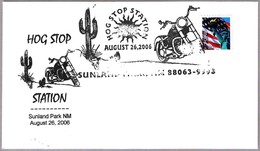 HOG STOP STATION - CACTUS. Sunland Park NM 2006 - Cactus