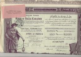 LOT DE 5 ACTIONS ILLUSTREES SOCIETE TURQUE DES MINES DE BALIA - KARAIDIN- 1926 - Mines