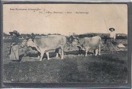Carte Postale 64. Pau  Agriculture  Gelos Au Labouragge  Attelage De Boeufs  Très Beau Plan - Pau