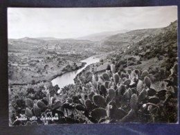 SARDEGNA -ORISTANO -TIRSO -F.G. LOTTO N°499 - Oristano