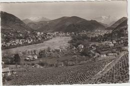 Alpes De  Haute  Provence : DIGNE  Les   BAINS : Vue   1965 - Digne