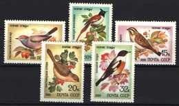 Collection Of Animals! USSR 1981. Animals / Birds Set MNH (**) - Pics & Grimpeurs