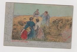 Cartolina Illustrata BASILIO CASCELLA , La Cantatrice Di S. Vito   - F.p.  - Anni  '1900 - Altre Illustrazioni