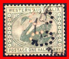 AUSTRALIA (OCEANIA)  SELLO WESTERN AUSTRALIA 1885 - Usati