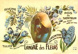 Langage Des Fleurs - Fantaisies