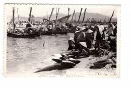 Viet Nam Vietnam Port De Pecheurs CPSM PF 1954 Plan Très Animée Poissons Poisson Pecheur Bateau - Vietnam
