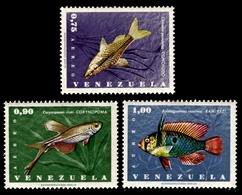 1966 Venezuela (3) - Venezuela