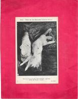 PARIS - 75 - Musée Des Arts Décoratifs - Etude De Femme Couchée Par DELACROIX - BES1 - - Musées