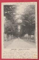 Virton - Avenue De La Gare - 1902 ( Voir Verso ) - Virton