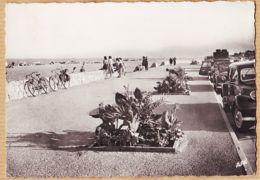 X66195 CANET-PLAGE (66) Boulevard Du Front De Mer 1950s à Maurice MURAT Pharmacien Hopital Militaire Ferryville Tunisie - Canet En Roussillon