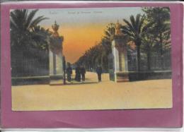 CADIZ Parque - Cádiz