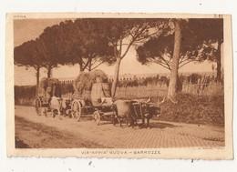 ROMA VIA APPIA NUOVA BARROZZE Charrettes Tirées Par Des Boeufs - Transports
