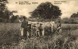 """Kitobola Congo Belge """" Faucheuse Mécanique """" - Congo Belga - Otros"""