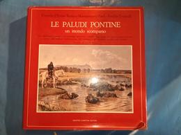 LIBRO LE PALUDI PONTINE LAZIO UN MONDO SCOMPARSO NEWTON COMPTON EDITORI OTTIME CONDIZIONI - Livres, BD, Revues