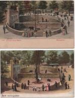 Bern  Parc Des Ours  2 Cartes - Ours