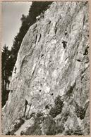 74 / CHAMONIX - Ecole D'escalade Des Gaillands (années 50) - Chamonix-Mont-Blanc