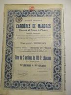 Carrières De Marbres - Pierres Et Fours à Chaux - Titre De Cinq Actions De 100 Francs - Mines