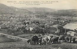 CARTE POSTALE ORIGINALE ANCIENNE : LANGEAC  VUE GENERALE  MOUTONS BERGER ANIMEE HAUTE LOIRE (43) - Langeac