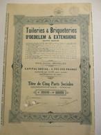 Tuileries Et Briqueteries D'Oedelem Et Extensions - Titre De Cinq Parts Sociales - Industrie