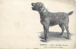 Themes Div-ref BB139- Animaux - Chiens - Chien Dewet *- Etalon Airedale Terrier - A Mm Chappellu Et Oudin  - - Cani