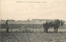 AUNEAU - La Culture En Beauce, Le Labour. - Cultures