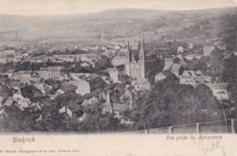 Diekirch Vue Prise Du Herenberg Circulée En 1903 - Diekirch