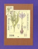 DDR 1982  Mi.Nr. 2691 , Herbst-Zeitlose - Giftpflanzen - Maximumkarte - 06.04.1982 - Piante Velenose