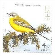 Estonia / Estland Yellow Wagtagtail Bird 2006 MNH - Estland