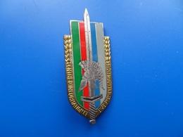 Centre D'Instruction D'Etudes Logistiques   ,insigne Logistique , Insigne , Drago Paris - Armée De Terre