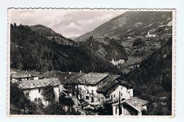 MONTAGNAGA  DI  PINE':   ERLA  E  COSTALTA  -  FOTO  -  FP - Trento
