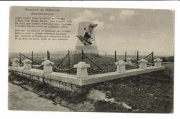 CPA - Carte Postale BELGIQUE- Waterloo- Monument Français VM1311 - Waterloo