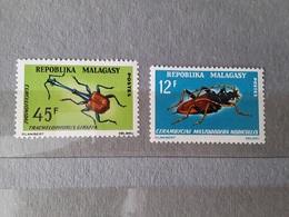 MalagasyBeetle (76) - Madagascar (1960-...)