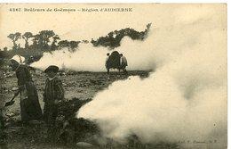 Région D' Audierne - Brûleurs De Goëmon - - Audierne
