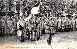 Les Troupes Polonaises En France - Pologne