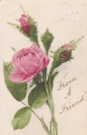 AM28 Greetings Postcard - Pink Rose From A Friend - Leamington Squared Circle Postmark - Holidays & Celebrations