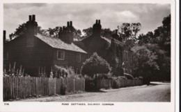 AS29 Pond Cottages, Dulwich Common - RPPC - London Suburbs
