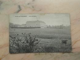 MONT-ST-GUIBERT: Villa Scolaire (kreuk) - Mont-Saint-Guibert