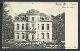 +++ CPA - TONGRE NOTRE DAME - Château Du Jardin - Nels Série 78 N° 5?  // - Chièvres