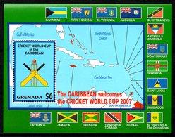 GRENADE. BF 707 De 2007. Coupe Du Monde De Cricket. - Cricket