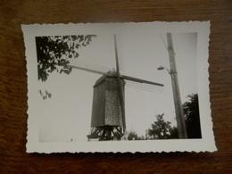 Oude Foto Van Windmolen Rond 1950  Ergens In West - Vlaanderen - Lieux