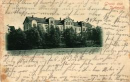 Detmold, Landeskrankenhaus, 1900 - Detmold