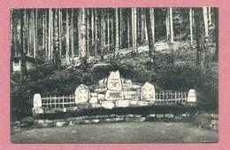 68 - VOGESEN - Denkstein - Denkmal - Monument - Infanterie Regiment 171 - A Localiser - Feldpost - Guerre 14/18 - Non Classificati