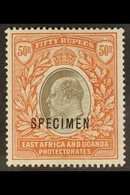 """1903 50r Grey And Red Brown, Wmk CA, Ed VII, Ovptd """"Specimen"""", SG 16s, Very Fine Mint. For More Images, Please Visit Htt - Publishers"""