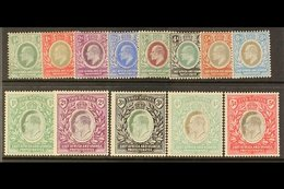 1904 - 07 Ed VII Set Complete To 5r, Wmk MCA, SG 17/30, Very Fine Mint. (13 Stamps) For More Images, Please Visit Http:/ - Publishers