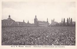 O L Vrouw Waver Kloster - Sint-Katelijne-Waver