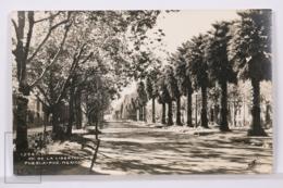 Original Photographic Postcard - Postal Mexico - Av. De La Libertad - Puebla - Osuna - México